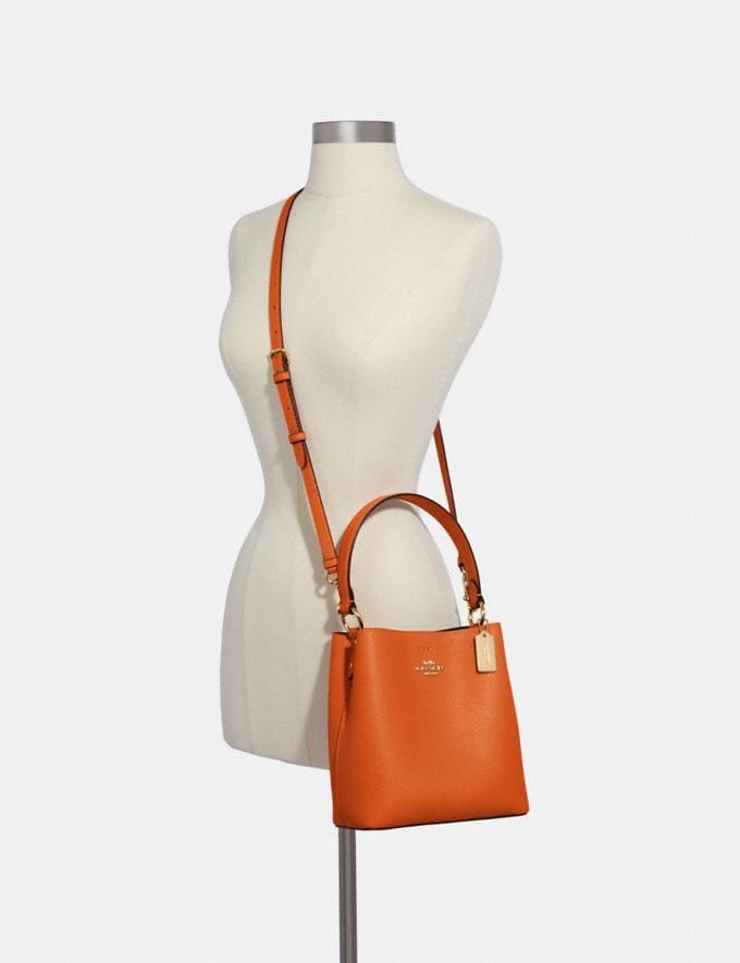 Coach Small Town Bucket Bag Im/Sedona Redwood What's New Alternate View 3
