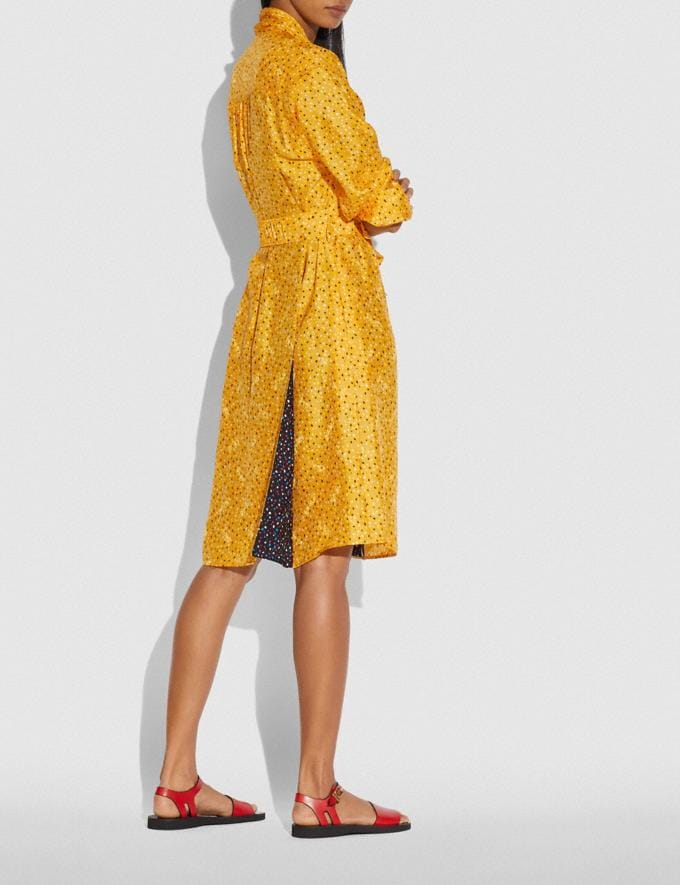 Coach Dot Print Architectural Drape Belted Dress Yellow/Blue Women Ready-to-Wear Dresses Alternate View 2