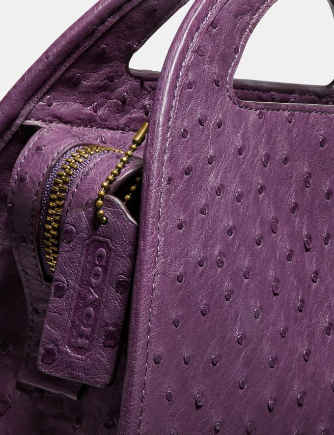 Coach Zip Dome Crossbody in Ostrich Brass/Purple Women Handbags Crossbody Bags Alternate View 4