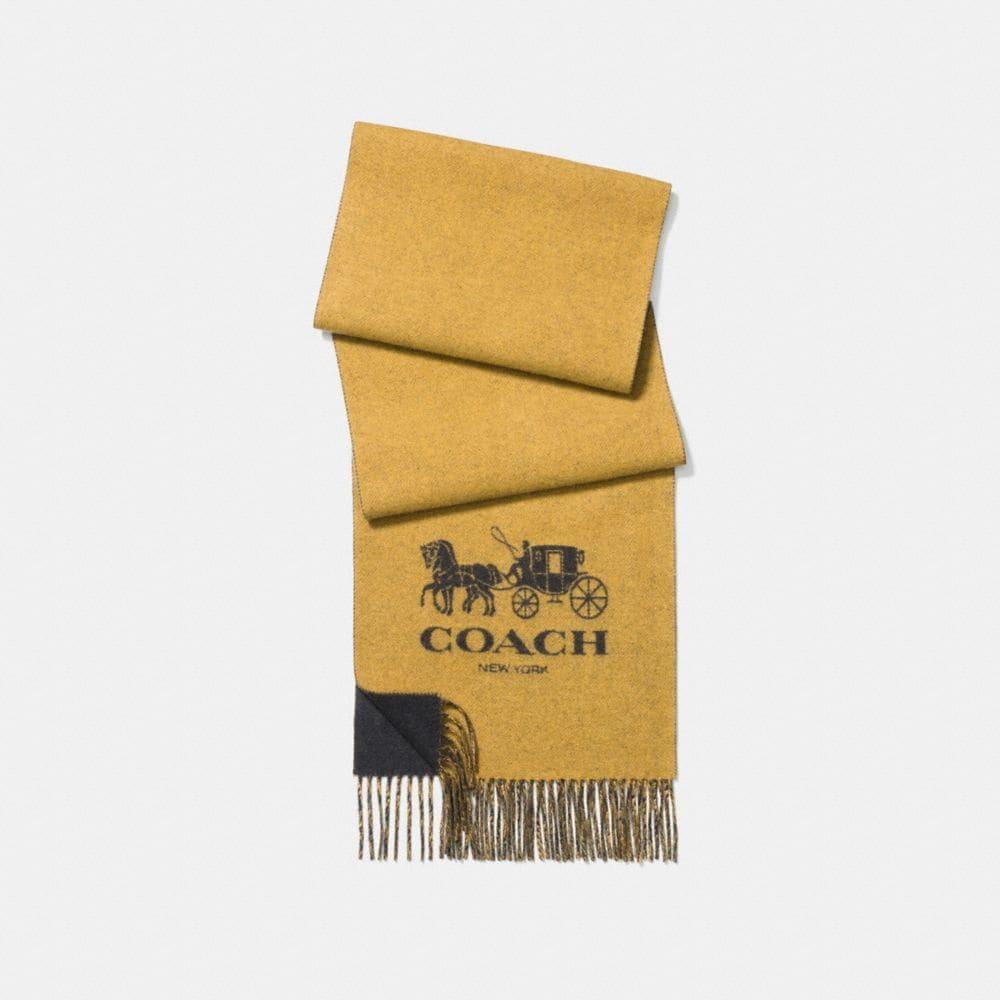 cashmere bicolor signature scarf