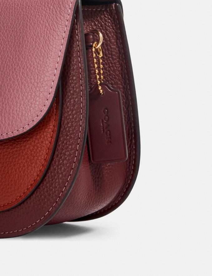 Coach Remi Saddle Bag in Colorblock Im/Rose Multi What's New Remi Collection Alternate View 5