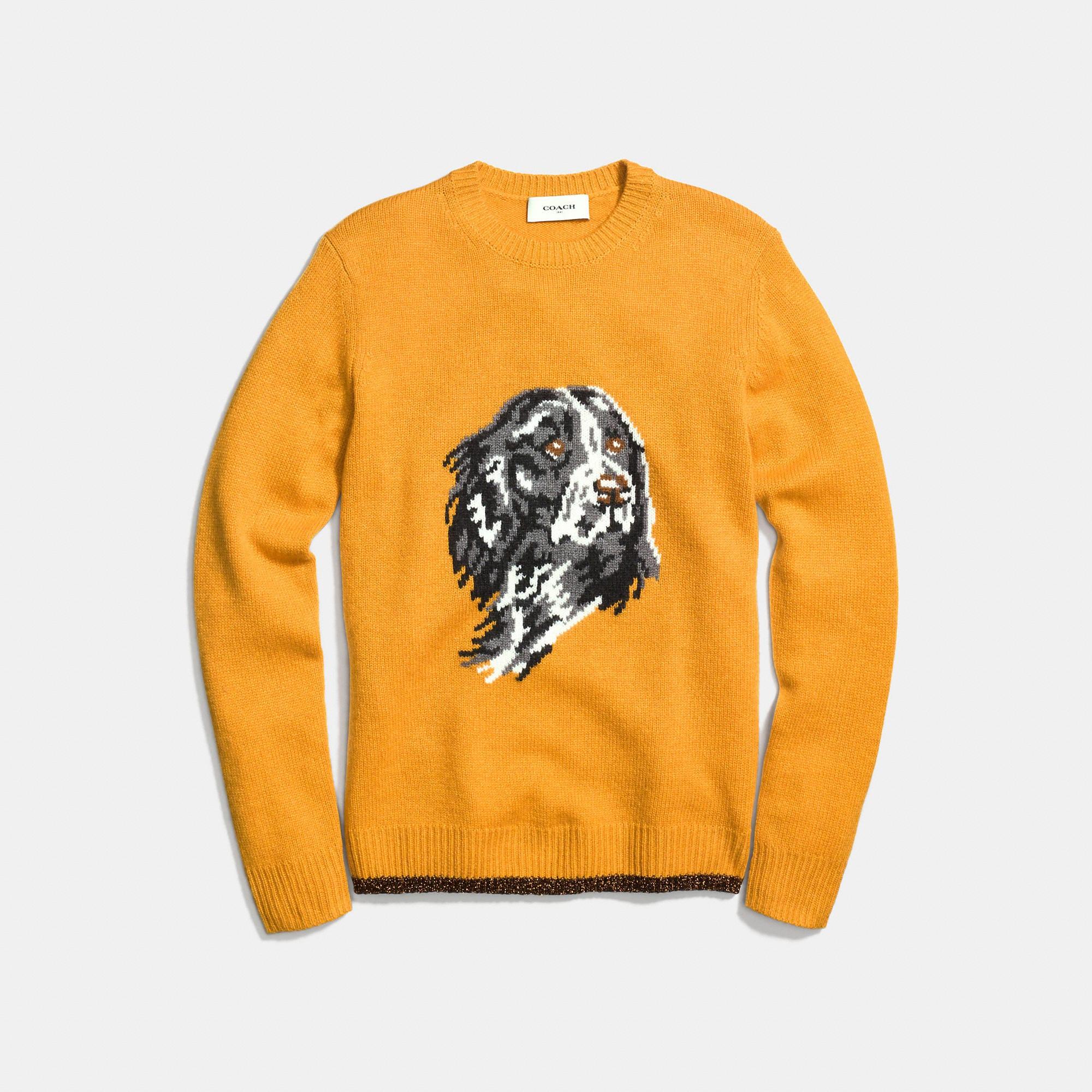 Coach Dog Intarsia Sweater