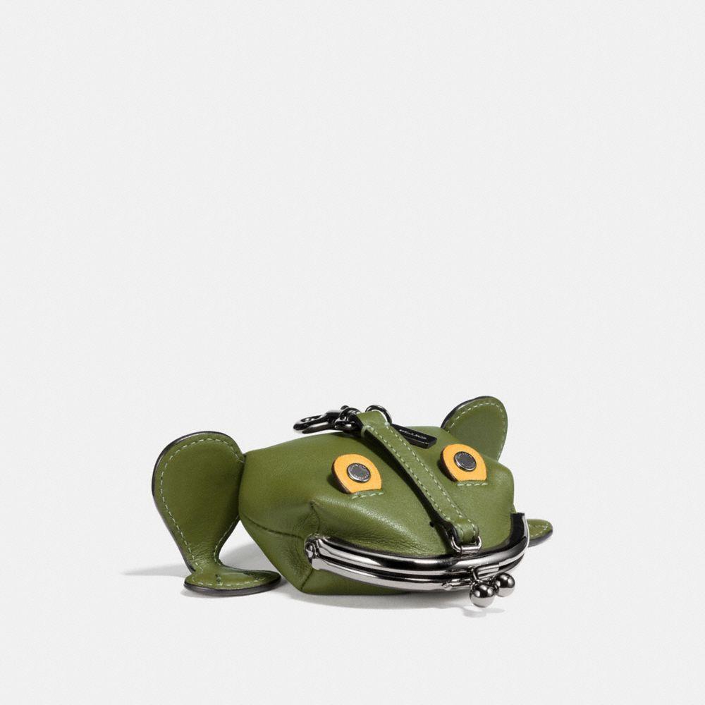 froggy coin case
