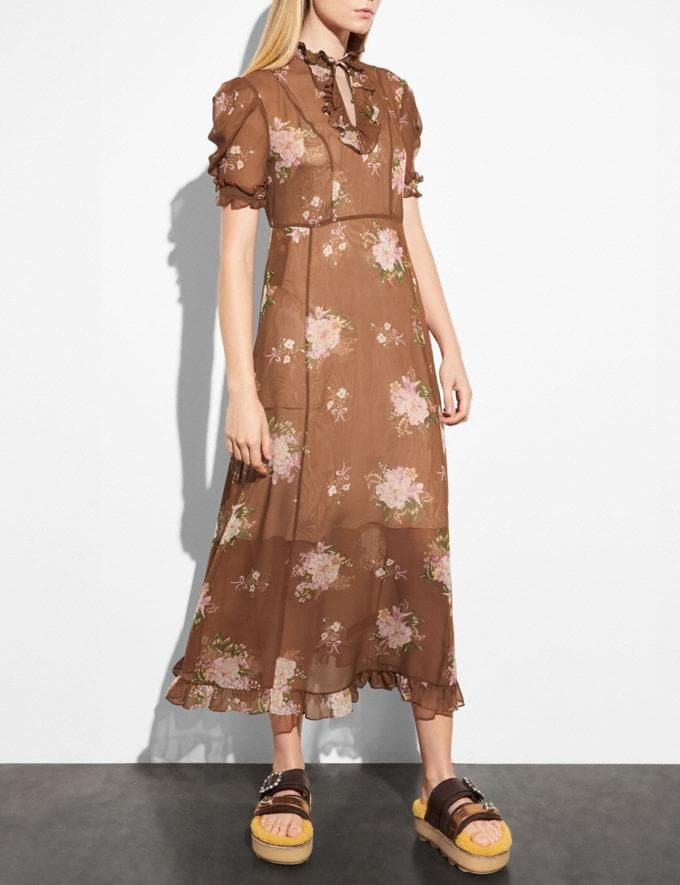 Coach Underpinning Dress Brown Multicolor  Alternate View 1