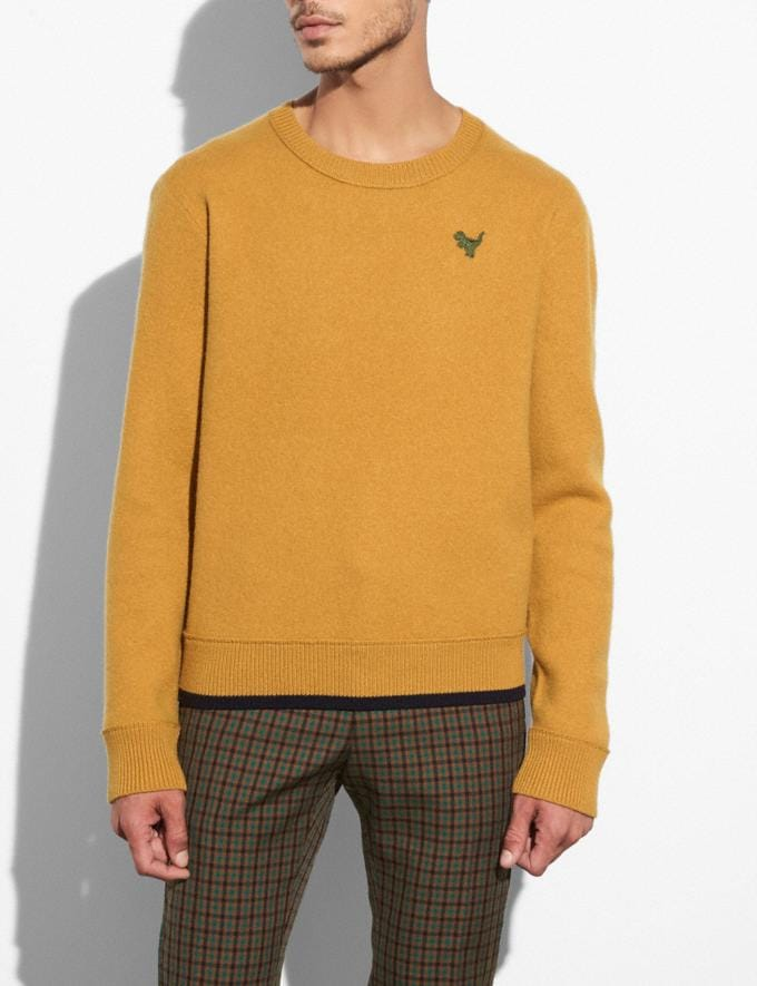 Coach Felted Rexy Patch Sweater Gold Men Ready-to-Wear Apparel