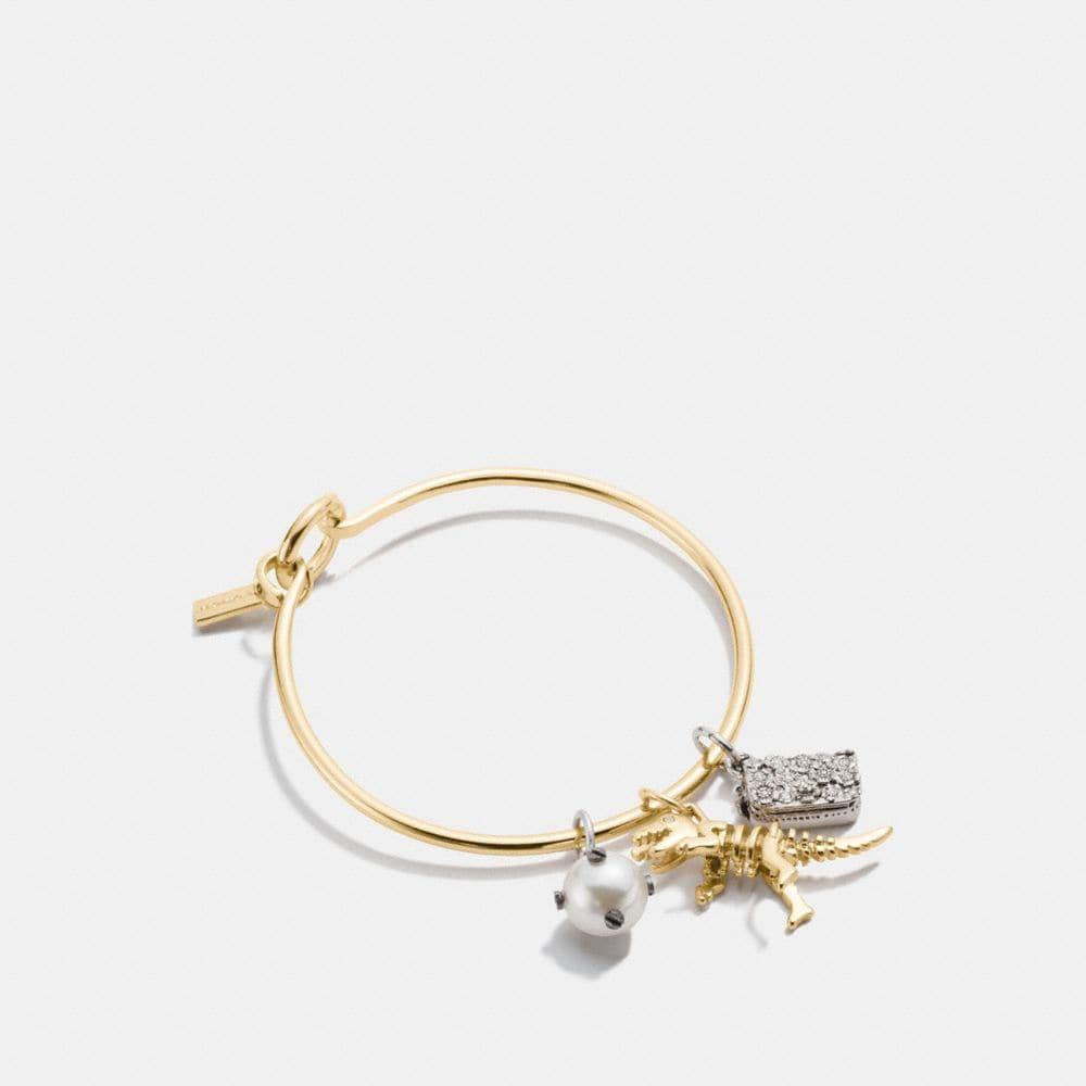 Rexy Charm Collectible Hoop Bangle Set by Coach