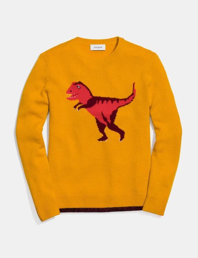 Coach Rexy Intarsia Sweater Yellow Women Ready-to-Wear Tops
