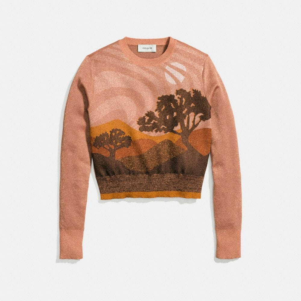 Coach Landscape Crewneck Sweater