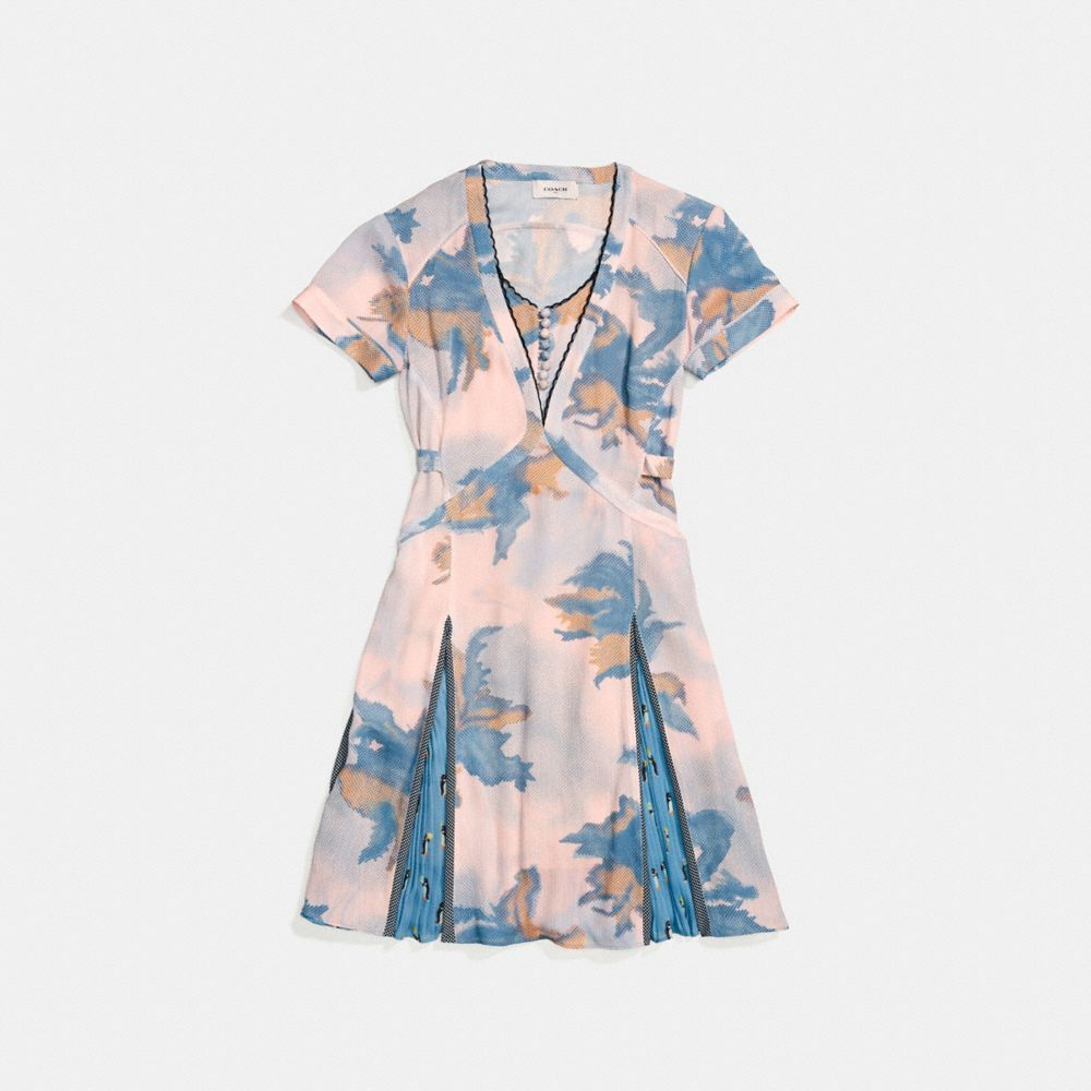 Coach Dreamy Floral Print Pleated Dress