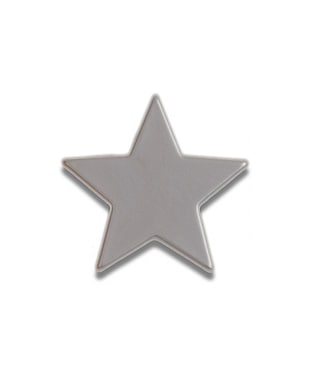 Silver Star Souvenir Pin