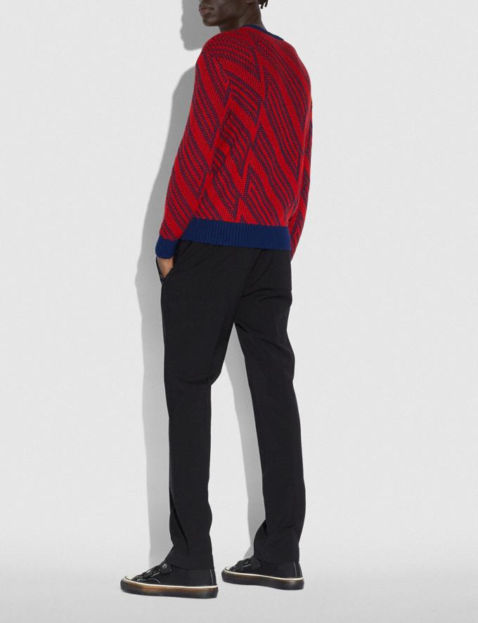 Coach Jacquard V-Neck Sweater Red  Alternate View 2