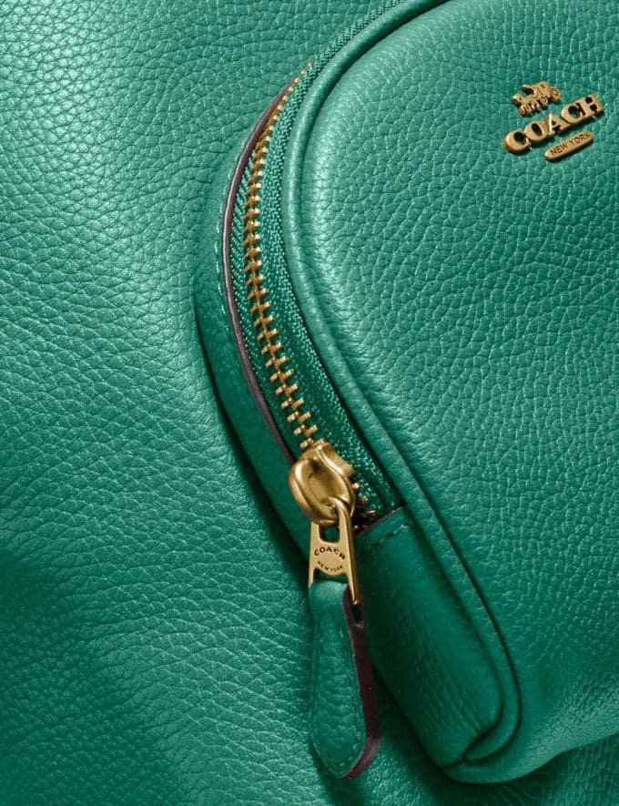 Coach Carrie Backpack 23 Brass/Green New Featured Coach Pride Collection Alternate View 4