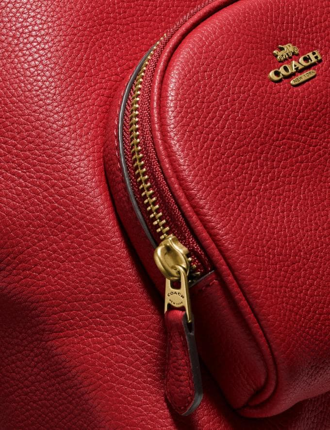 Coach Carrie Backpack 23 Brass/Red Apple New Featured Coach Pride Collection Alternate View 5
