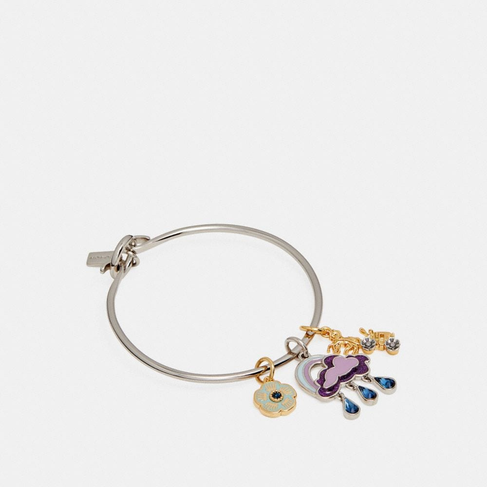 Coach Cloud and Rainbow Bangle