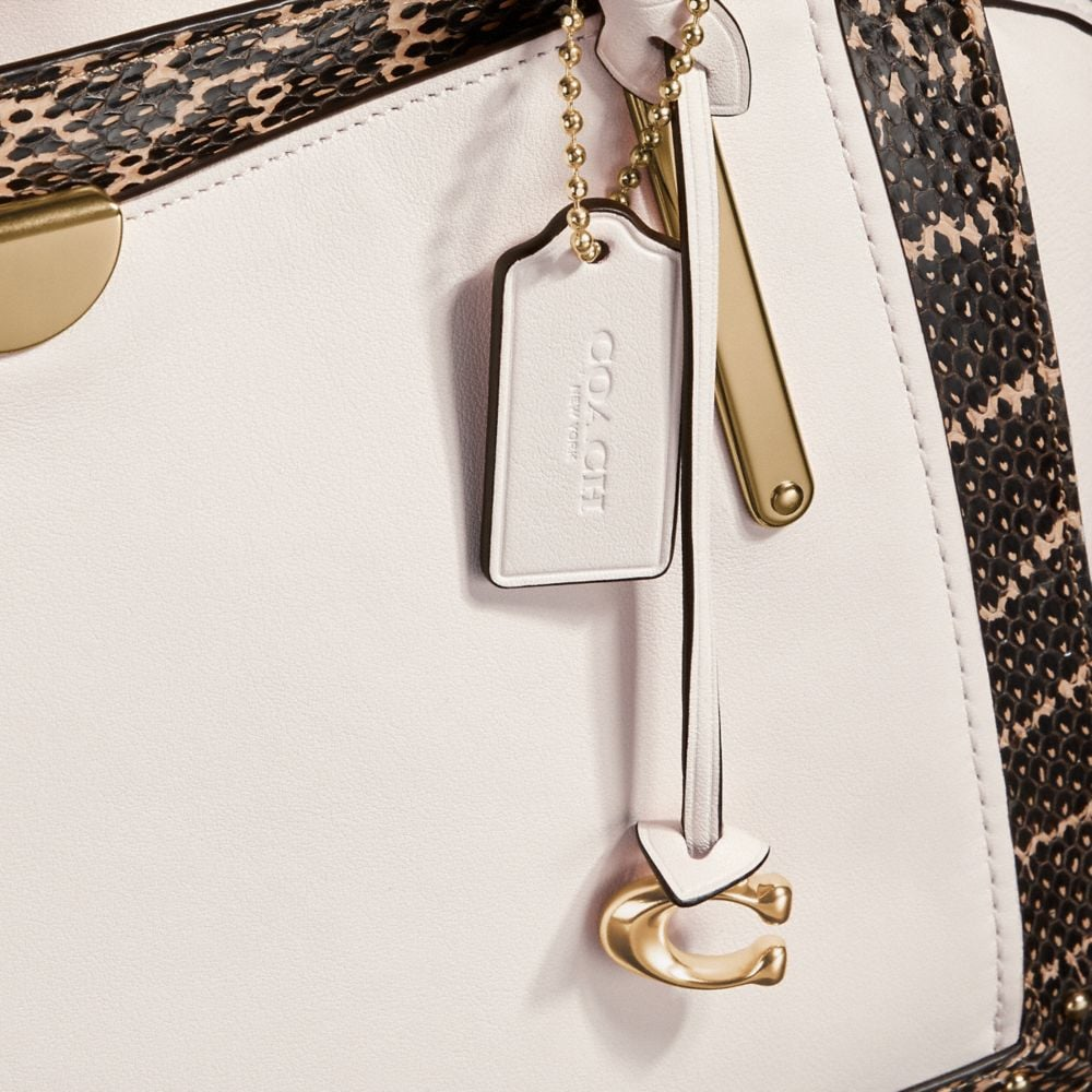 Coach Dreamer 36 in Colorblock With Genuine Snakeskin Detail Alternate View 5