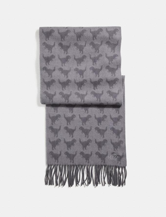 Coach Graphic Rexy Scarf Heather Grey/Charcoal SALE Men's Sale Accessories