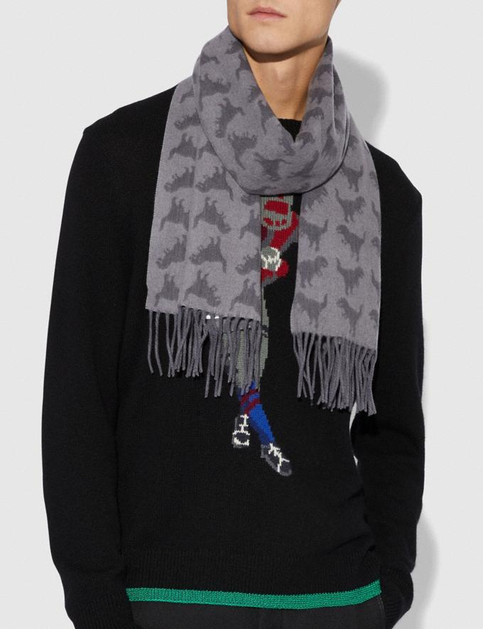 Coach Graphic Rexy Scarf Heather Grey/Charcoal SALE Men's Sale Accessories Alternate View 1