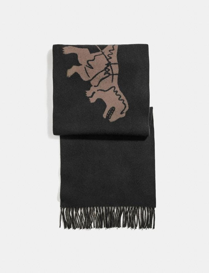 Coach Rexy and Carriage Cashmere Scarf Black/Camel