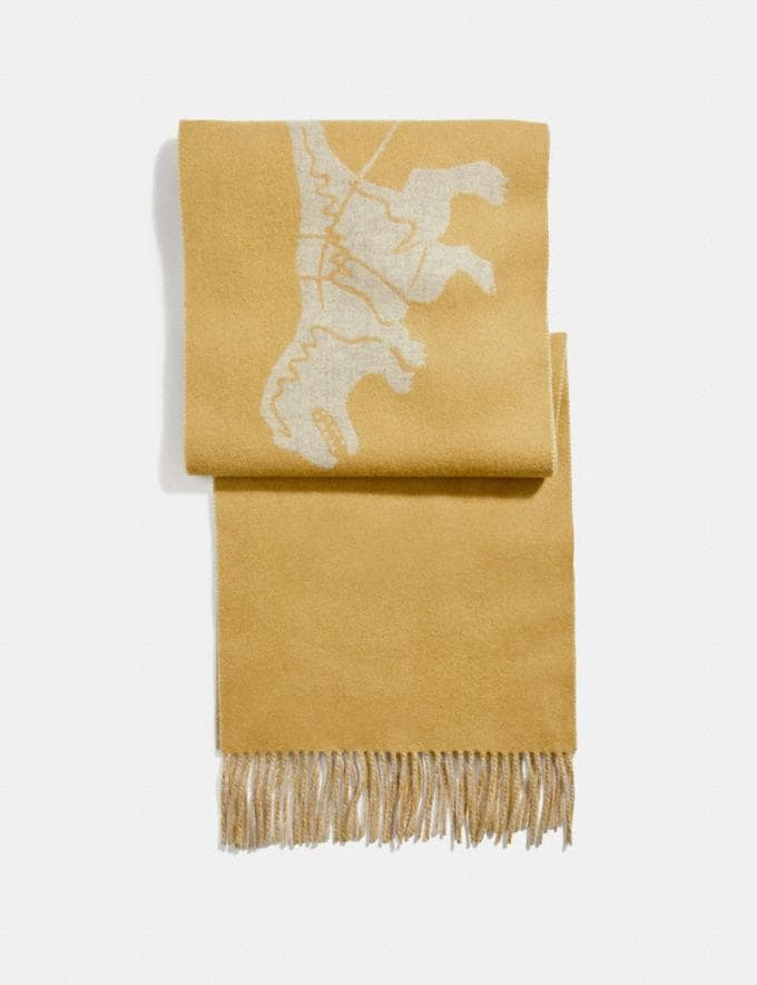 Coach Cashmere Bicolor Rexy and Carriage Scarf Maize/Heather Grey