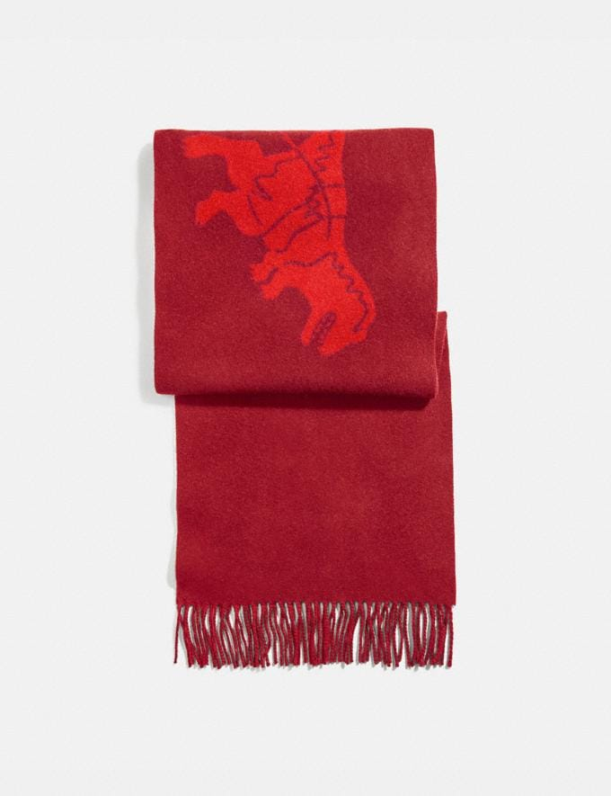Coach Cashmere Bicolor Rexy and Carriage Scarf Crimson Red Orange Men Ready-to-Wear Hats Scarves & Gloves