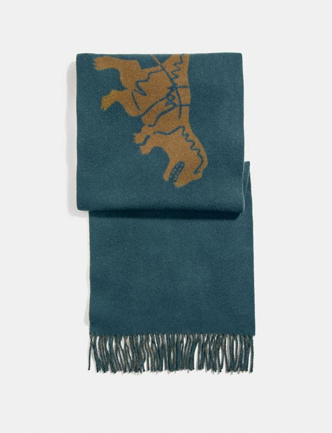 Coach Rexy and Carriage Cashmere Scarf Navy/Amber Men Accessories Hats, Scarves & Gloves