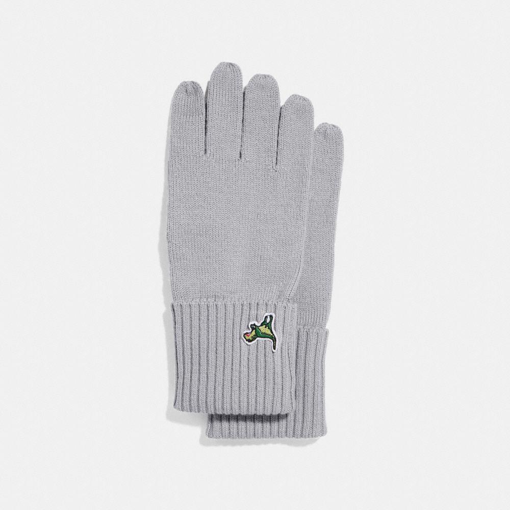 Coach Knit Tech Rexy Gloves
