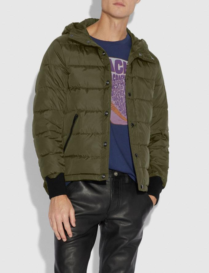 Coach Parka Olive  Alternate View 3