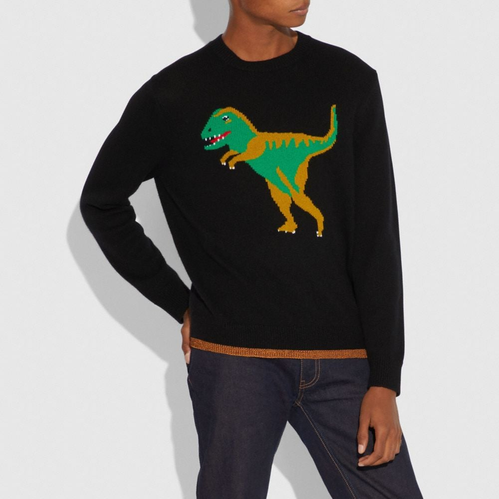 Coach Rexy Intarsia Sweater Alternate View 1