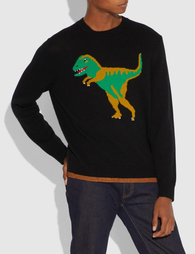 Coach Rexy Intarsia Sweater Black Men Ready-to-Wear Alternate View 1
