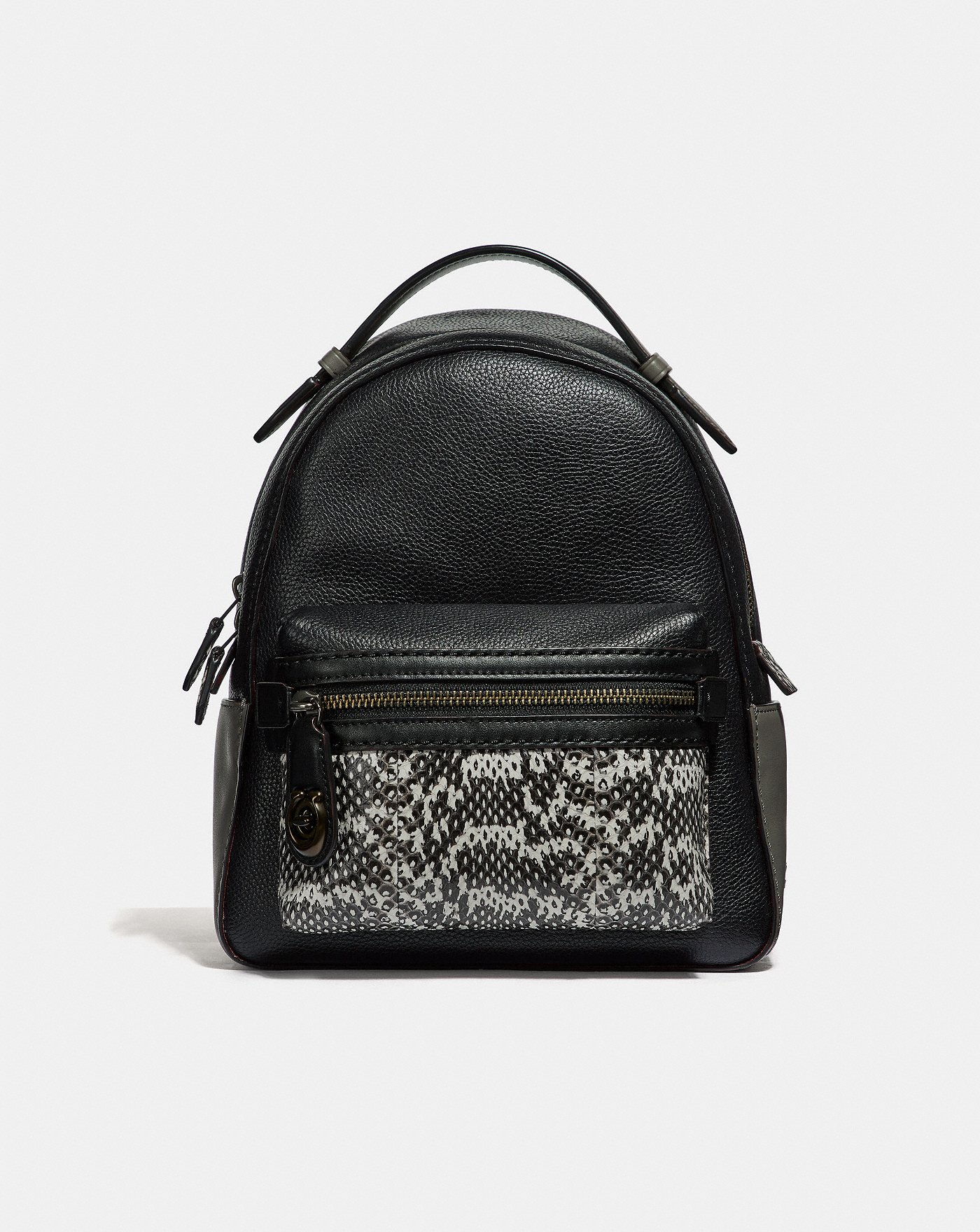 168e112806a25 Campus Backpack 23 in Colorblock With Snakeskin Detail