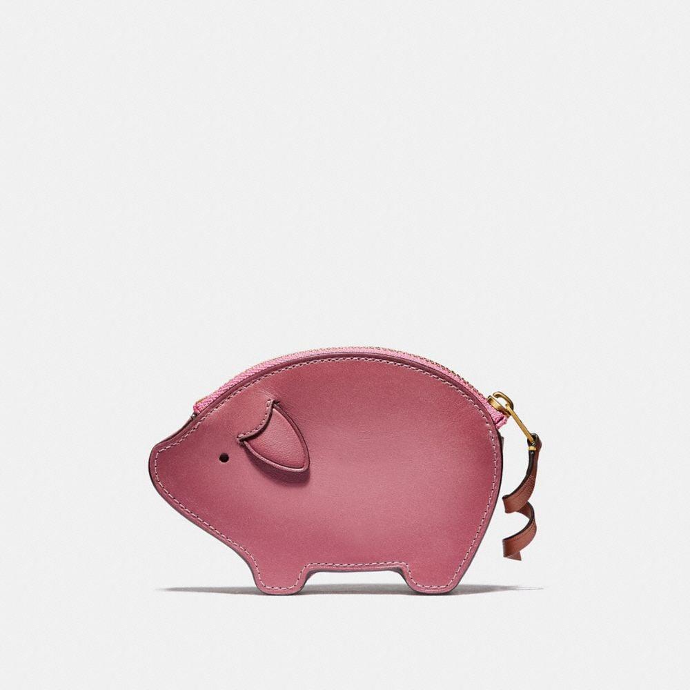 pig coin case