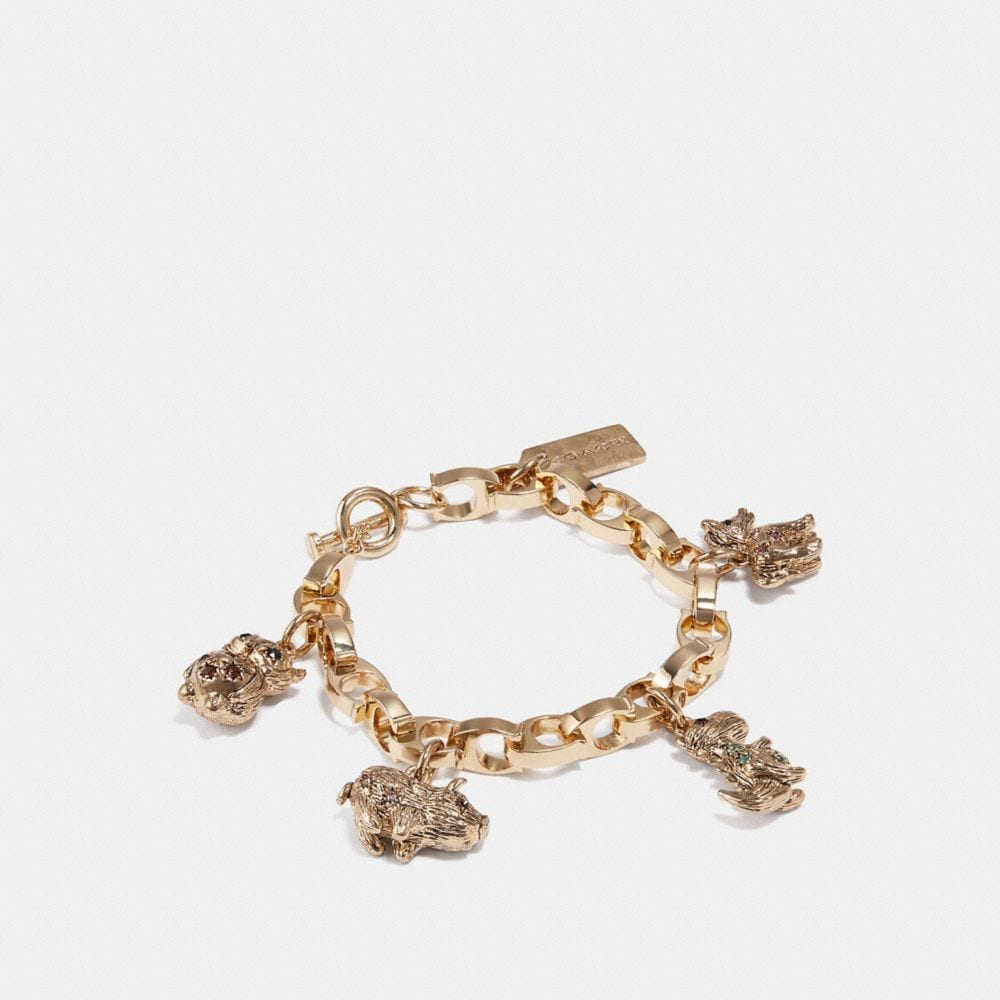 Coach Party Animals Charm Bracelet in Multi/Gold