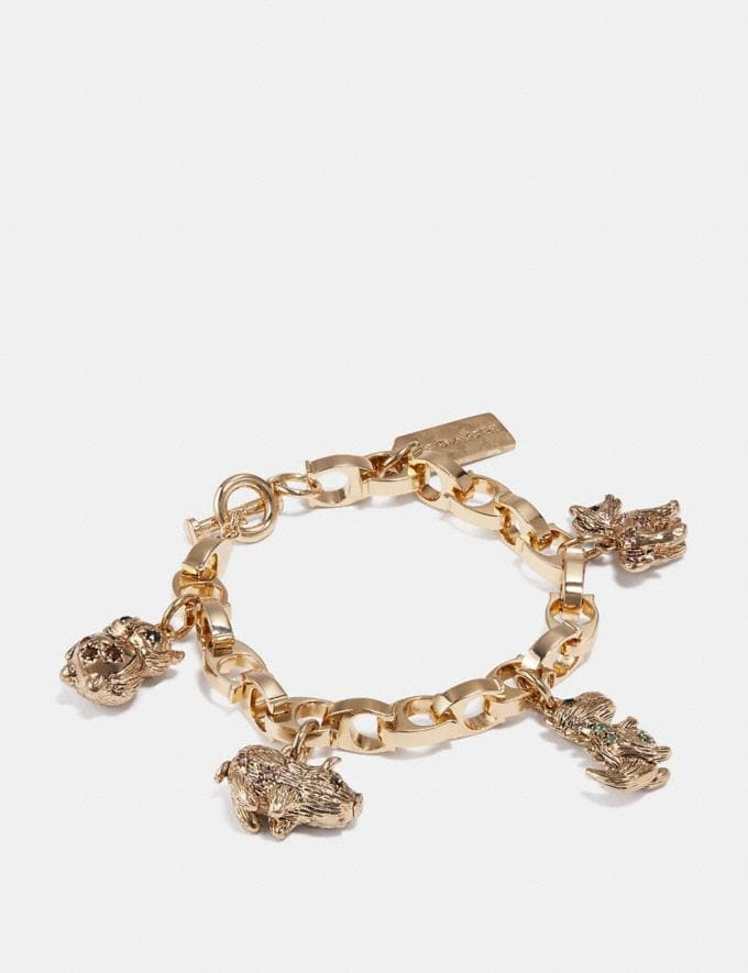Coach Party Animals Charm Bracelet Multi/Gold Women Accessories Jewelry & Watches