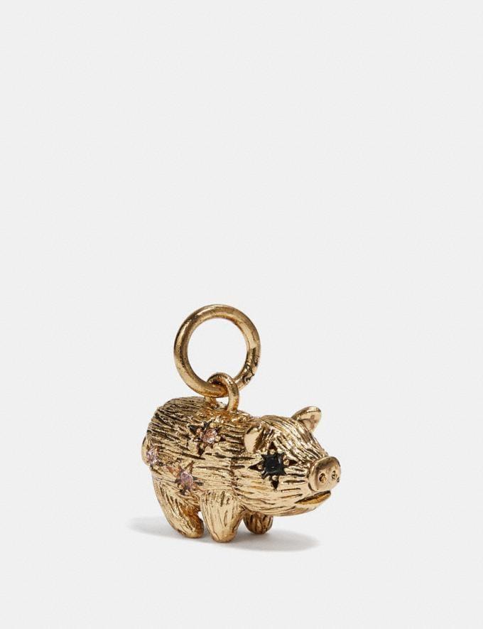 Coach Pig Charm Multi/Gold