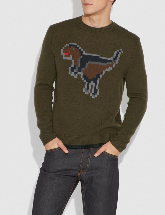 Coach Pixel Rexy Intarsia Sweater Olive  Alternate View 1