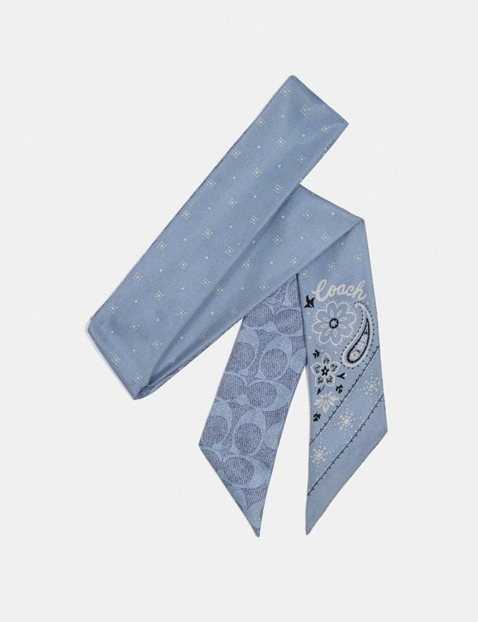 Coach Bandana Print Silk Skinny Scarf Slate Women Accessories Scarves