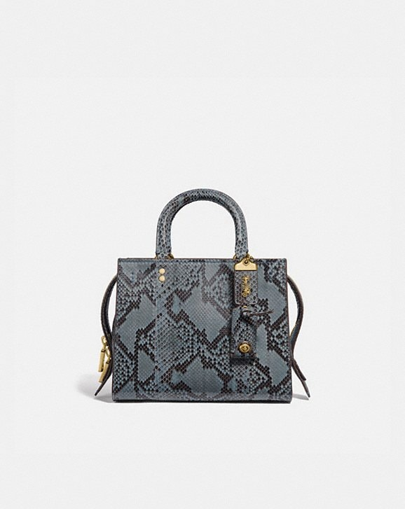 Coach ROGUE 25 IN PYTHON