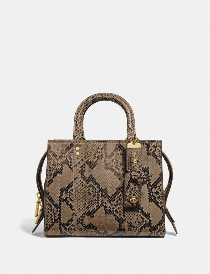 Coach Rogue 25 in Python Brass/Carta Zucchero Women Handbags Shoulder Bags & Hobos