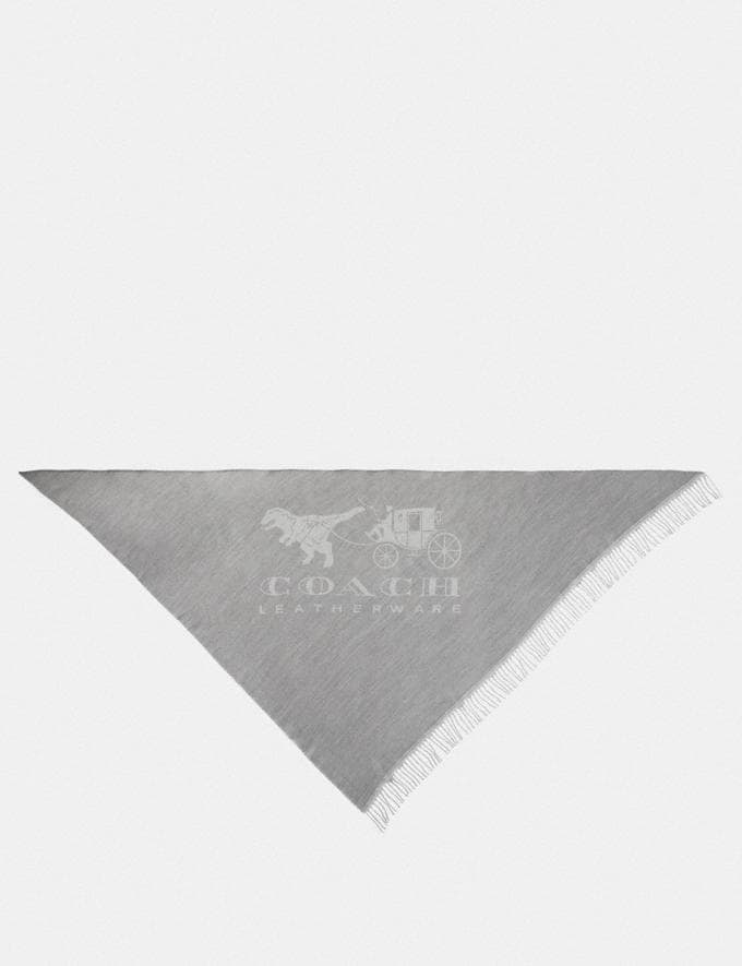 Coach Rexy and Carriage Oversized Triangle Light Grey/Chalk Women Accessories Scarves