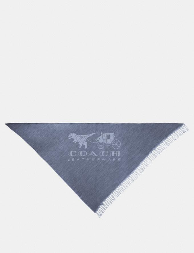 Coach Rexy and Carriage Oversized Triangle Denim/Light Grey Women Accessories Scarves