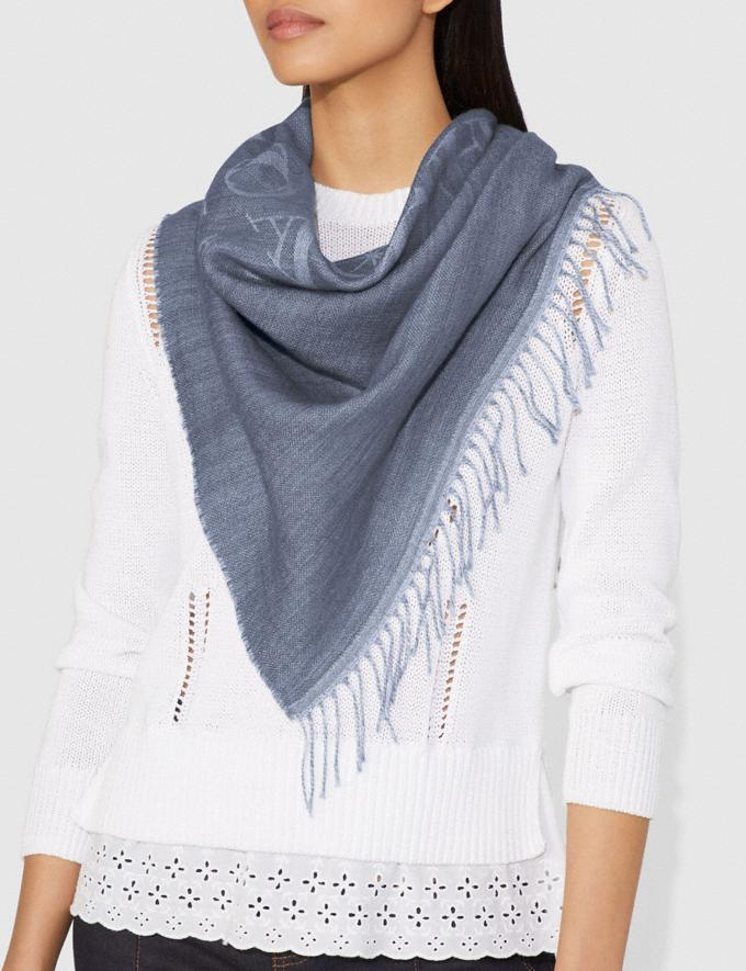 Coach Rexy and Carriage Oversized Triangle Denim/Light Grey Women Accessories Scarves Alternate View 1