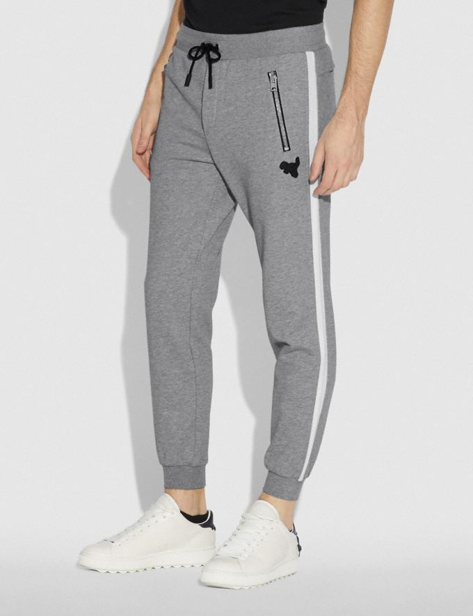 Coach Track Pants Heather Grey  Alternate View 1