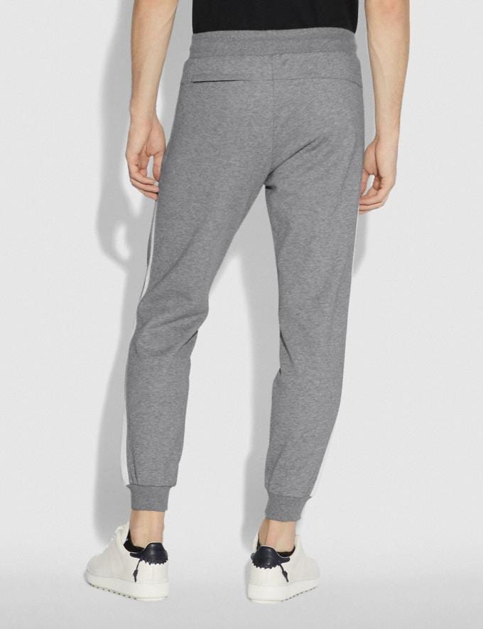 Coach Track Pants Heather Grey  Alternate View 2