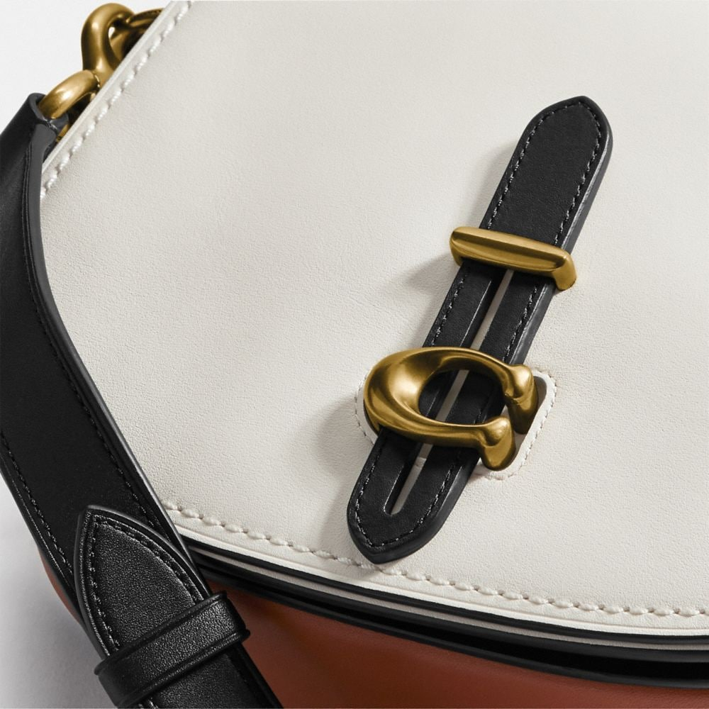 Coach Saddle in Colorblock Alternate View 3
