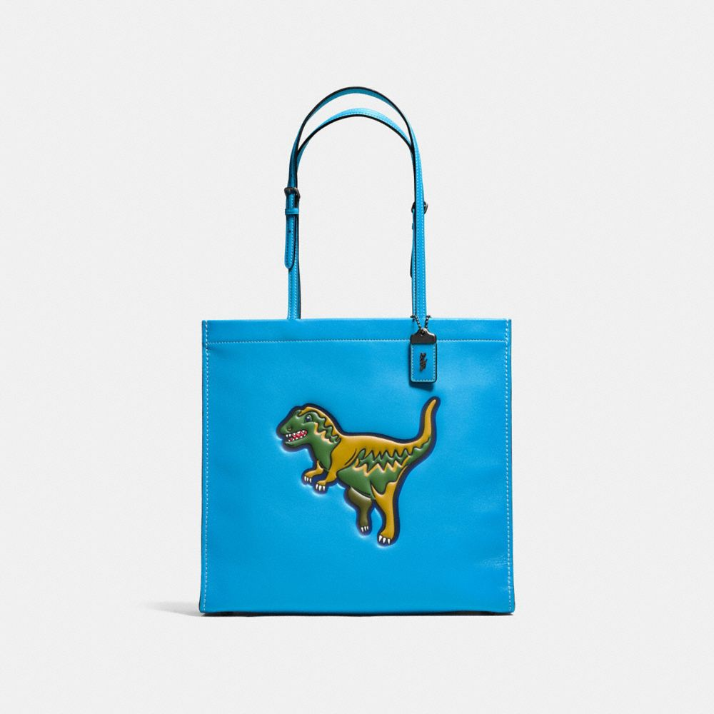 Coach Rexy Skinny Tote in Glovetanned Leather