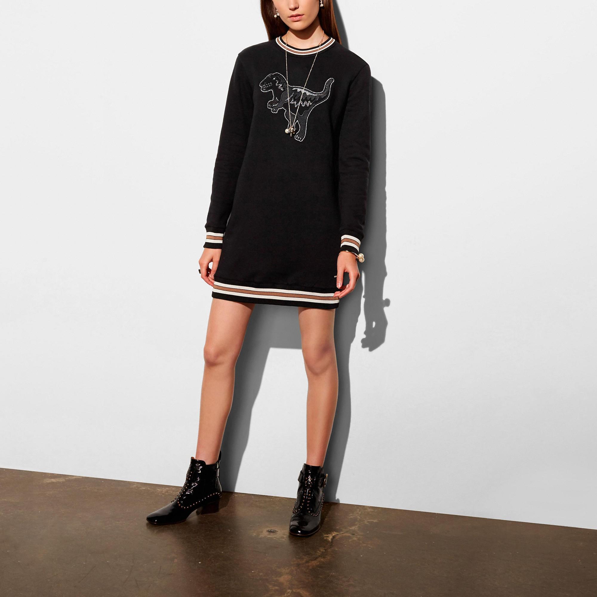 Coach Varsity T-Rex Sweatshirt Dress