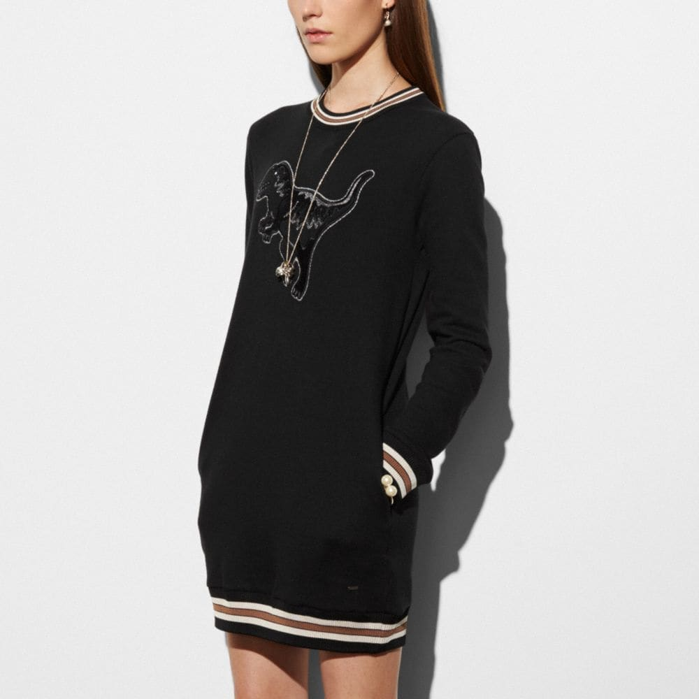 Varsity Rexy Sweatshirt Dress - Alternate View M