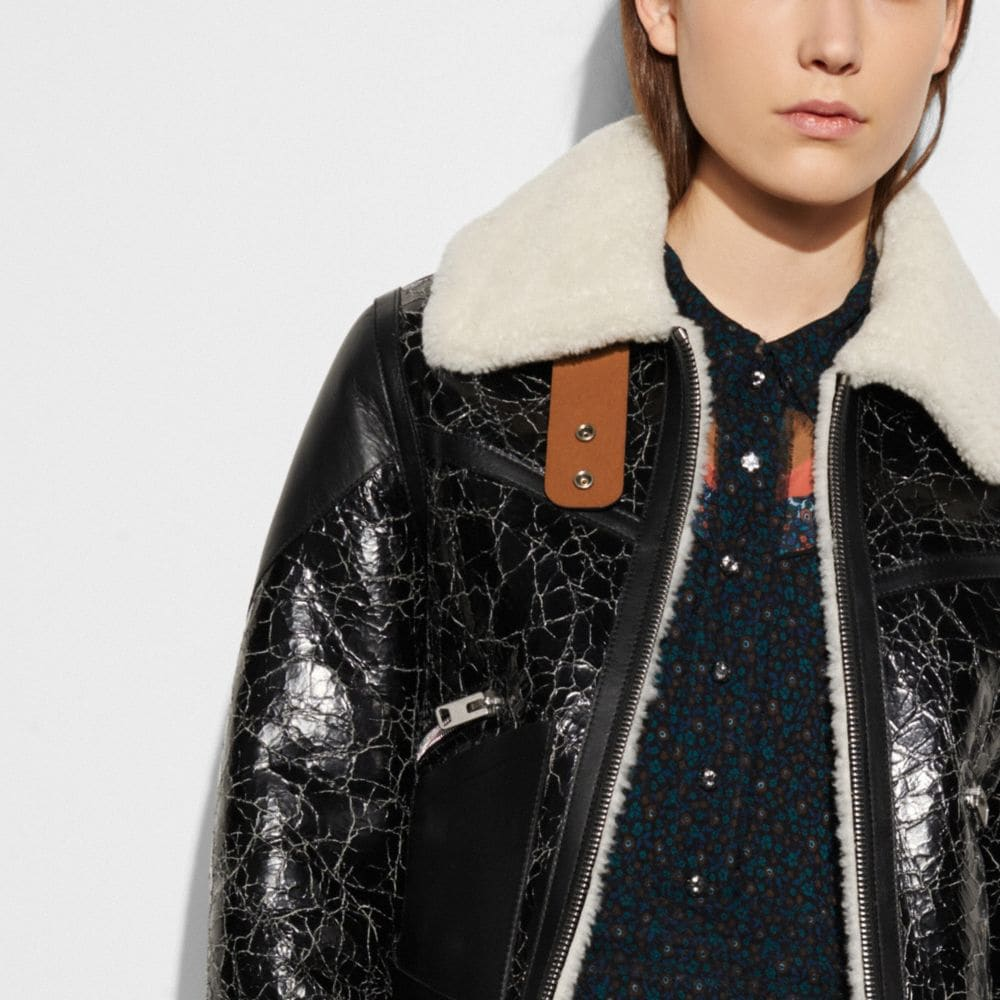 Crackled Shearling Aviator Jacket - Alternate View M2