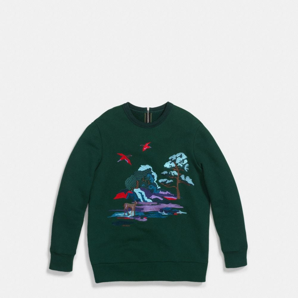 Embroidered Souvenir Sky Sweatshirt - Alternate View A1