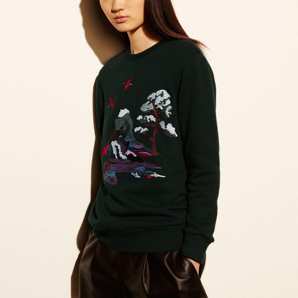 Embroidered Souvenir Sky Sweatshirt - Alternate View M1